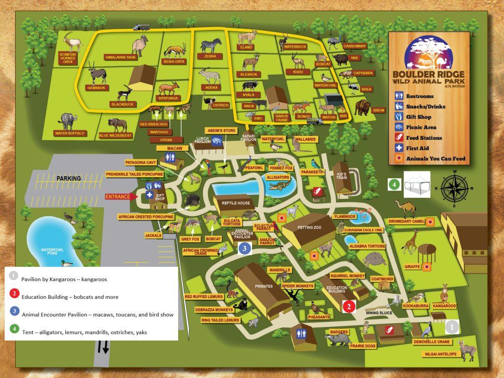 Baby Animal Days – Boulder Ridge Wild Animal Park   Zoo