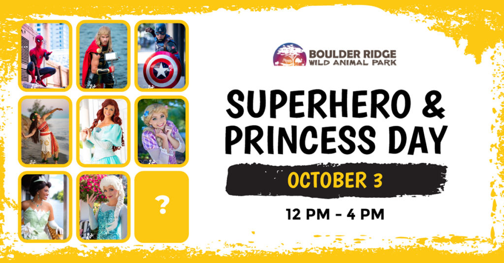 Princess & Superheros