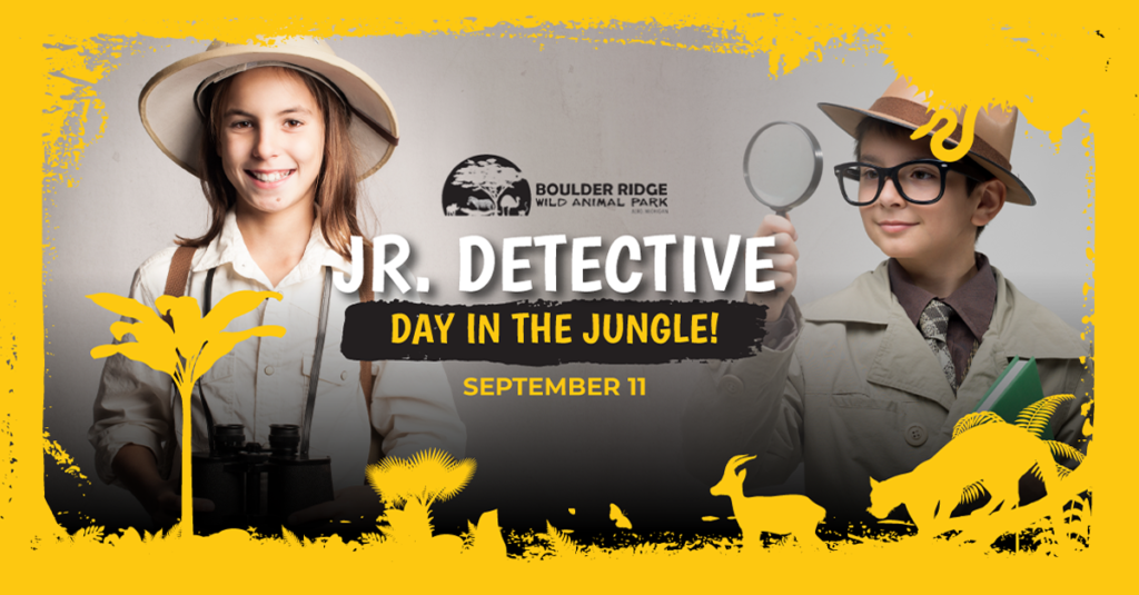 Jr. Detective Day In The Jungle